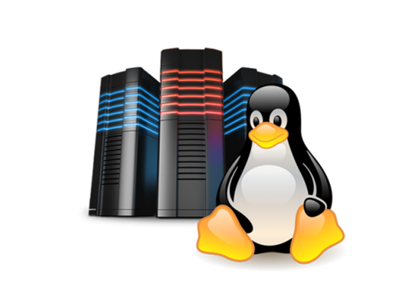 Linux Shared Hosting